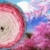 604 Планината Фуджи и цъфналите вишни